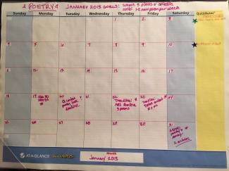 calendar jan 2015